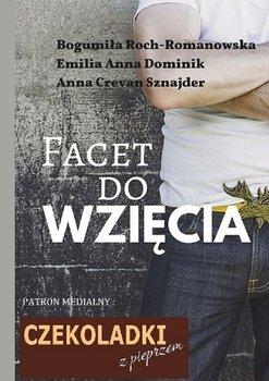 Facet do wzięcia-Sznajder Anna, Roch-Romanowska Bogumiła, Dominik Emilia Anna