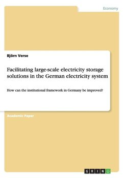 Facilitating large-scale electricity storage solutions in the German electricity system - Verse Björn