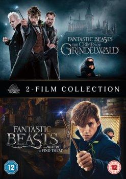 Fantastic Beasts: 2-film Collection (brak polskiej wersji językowej)-Yates David