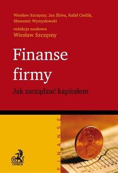 Finanse firmy. Jak zarządzać kapitałem                      (ebook)