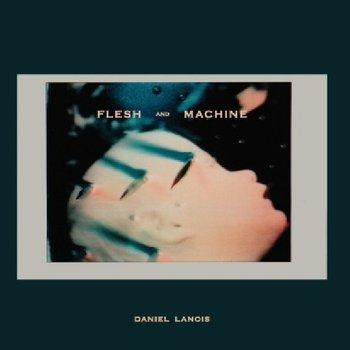 Flesh And Machine-Lanois Daniel