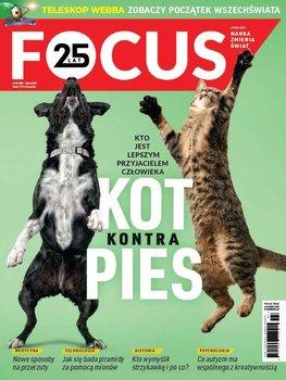 Focus 7/2021-Opracowanie zbiorowe