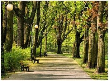 Fototapeta Park Cytadela, 2 elementy, 200x150 cm-Oobrazy