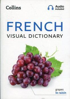 French Visual Dictionary-Opracowanie zbiorowe