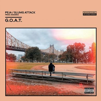 G.O.A.T. - Peja, Slums Attack