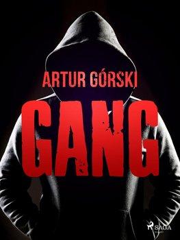 Gang-Górski Artur
