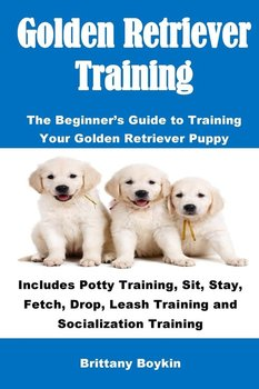 Golden Retriever Training - Boykin Brittany