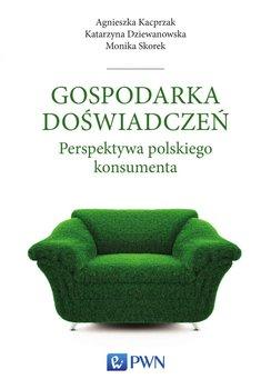 Gospodarka doświadczeń. Perspektywa polskiego konsumenta                      (ebook)