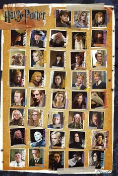 Harry Potter 7 Characters - plakat 61x91,5 cm - GBeye