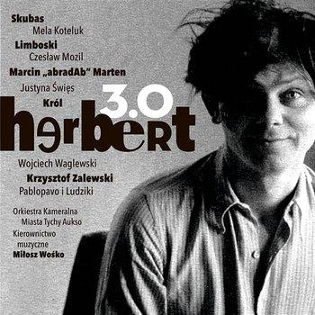 Herbert 3.0-Various Artists