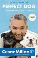 How to Raise the Perfect Dog-Millan Cesar
