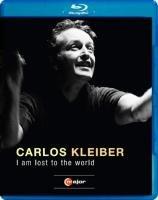 I am lost to the World (brak polskiej wersji językowej)