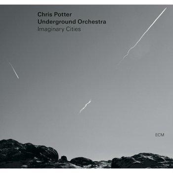 Imaginery Cities-Potter Chris