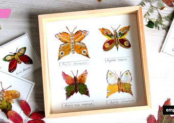 Inspiracje z liści - gablota z jesiennymi motylami