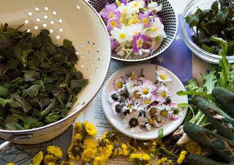 Jadalne kwiaty, drzewa i chwasty, czyli najnowsze, oryginalne książki kulinarne