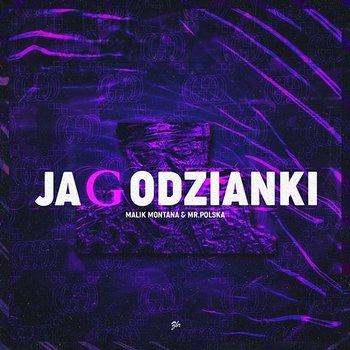 Jagodzianki-Malik Montana, Mr.Polska