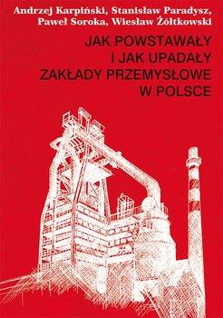 Jak powstawały i jak upadały zakłady przemysłowe w Polsce                      (ebook)