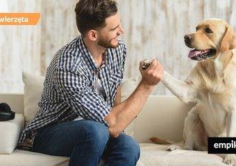 Jesteś właścicielem psa czy jego opiekunem?