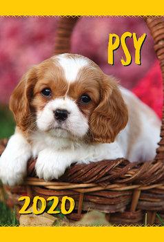 Psy Pies Kalendarz ścienny planszowy 2020 Astro