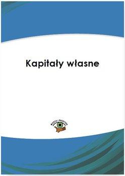 Kapitał własny                      (ebook)