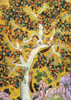 Karnet okolicznościowy, Squirrels on a plane tree