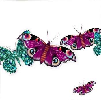 Karnet okolicznościowy Swarovski, motyle-Clear Creations