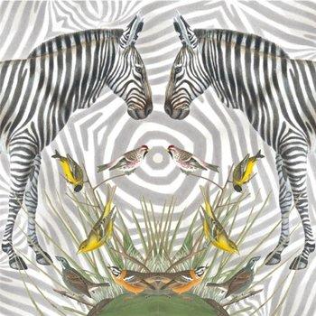 Karnet okolicznościowy, Zebra-Museums & Galleries