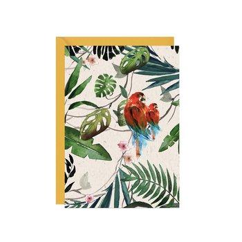 Karnet walentynkowy, Papużki w tropikach