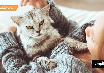 Koty dla alergików – czy można myśleć o kocie przy alergii?
