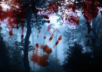 Kryminały, które zmrożą krew w żyłach w ostatnie letnie dni...
