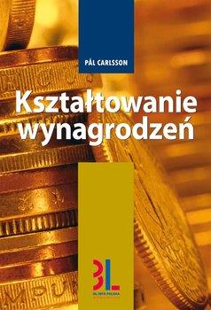 Kształtowanie wynagrodzeń                      (ebook)