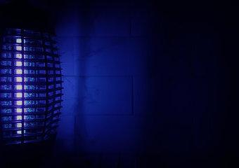 Lampa owadobójcza – jaką lampę na komary i inne owady wybrać?