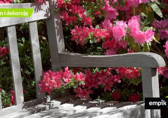 Ławka ogrodowa – jaka najlepsza? 9 propozycji ławek do ogrodu