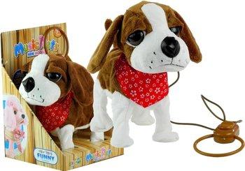 Lean Toys, maskotka interaktywna Piesek na smyczy-Lean Toys