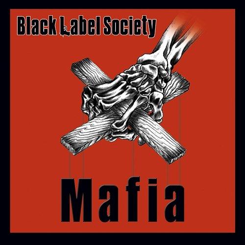 state level society