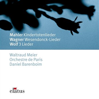 Mahler, Wagner & Wolf : Orchestral Songs-Waltraud Meier