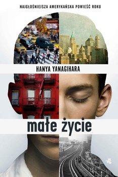 Małe życie-Yanagihara Hanya