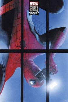 Marvel 80 Years Spider-man - plakat 61x91,5 cm-Grupoerik