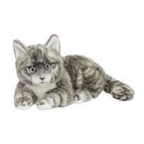 Maskotka Kot amerykański srebrny krótkowłosy