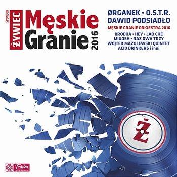 Męskie Granie 2016-Various Artists