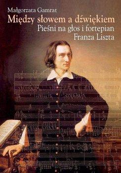 Między słowem a dźwiękiem. Pieśni na głos i fortepian Franza Liszta                      (ebook)