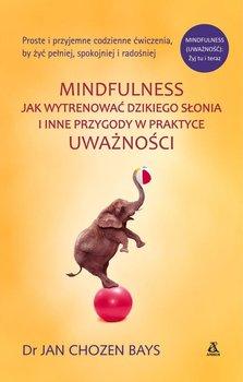 Mindfulness: Jak wytresować dzikiego słonia i inne przygody w praktyce uważności-Bays Jan Chozen