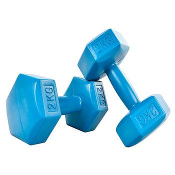 Modernhome, Hantelki, niebieski, 2x2 kg-ModernHome