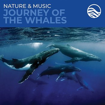 Nature & Music: Journey Of The Whales - David Arkenstone