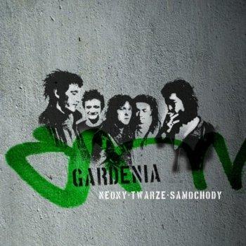 Neony Twarze Samochody-Gardenia