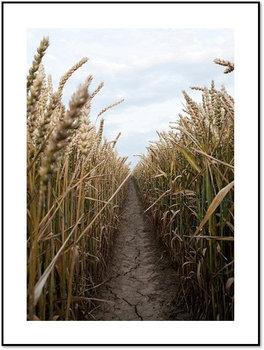 Nowoczesny plakat FABRYKA PLAKATU Droga wśród Zbóż A4, 21x30 cm-Fabryka plakatu