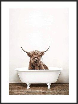 Nowoczesny plakat FABRYKA PLAKATU Krowa Szkocka w Wannie A3, 30x42 cm-Fabryka plakatu