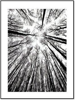 Nowoczesny plakat FABRYKA PLAKATU Leśna Perspektywa A4, 21x30 cm-Fabryka plakatu
