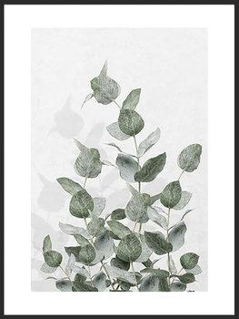 Nowoczesny plakat FABRYKA PLAKATU Listki Eukaliptusa A4, 21x30 cm-Fabryka plakatu