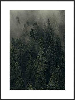 Nowoczesny plakat FABRYKA PLAKATU Mglisty Las A2, 42x60 cm-Fabryka plakatu